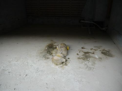 石巻で撮影したボロボロになったまま残されたおもちゃ
